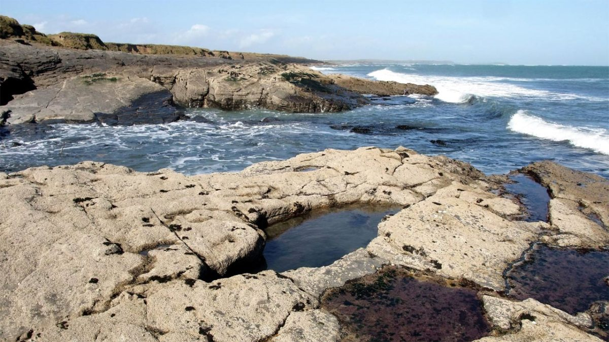 Intertidal rock pools
