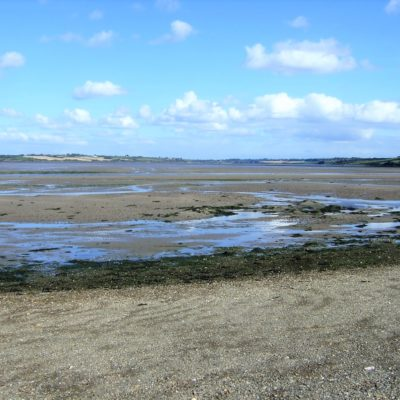 201 Sand flats at low tide
