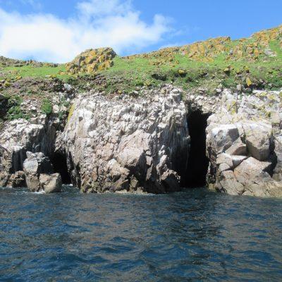 503 Sea caves at Saltee Island Great