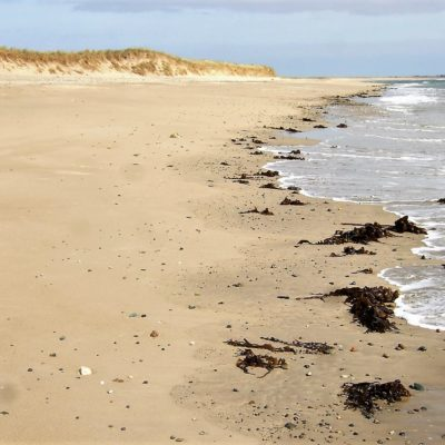 601 Sand beaches form erode and reform along Irelands Great Barrier Coast