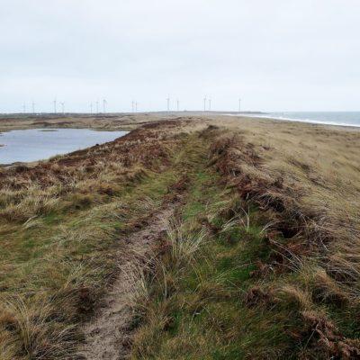 803 Hind dune ponds